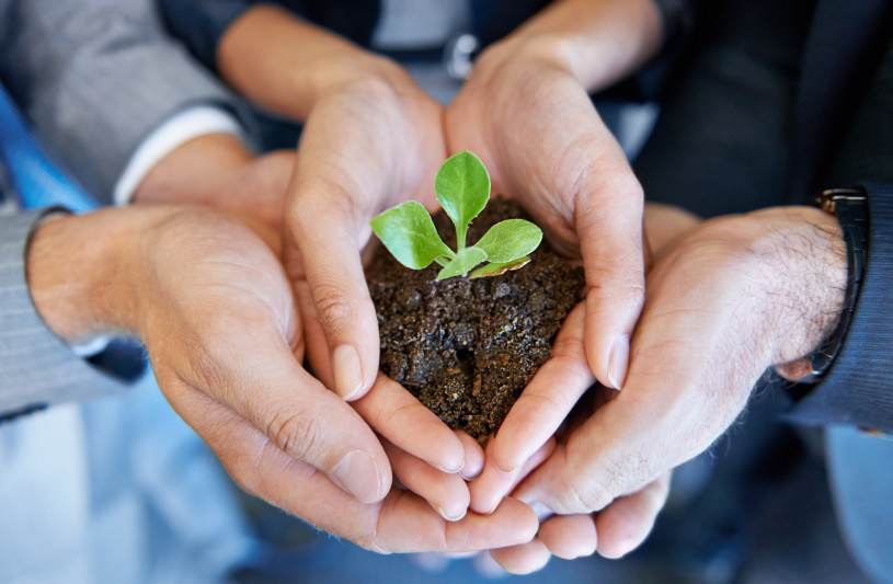 THE ROLE OF CORPORATE SOCIAL RESPONSIBILITY IN BUSINESS